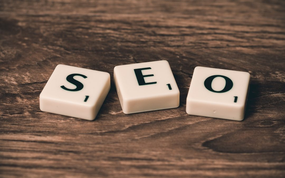 SEO base efficace in 12 mosse